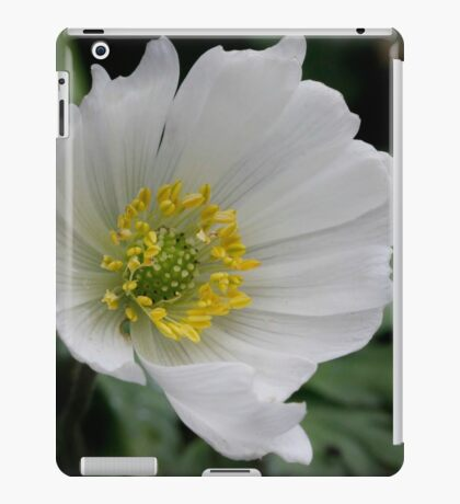 Grecian Windflower iPad Case/Skin