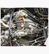 Cylinder Blocks of a Propeller Engine Poster