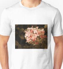 Secrets in Sepia Unisex T-Shirt