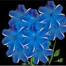 Blue by IrisGelbart