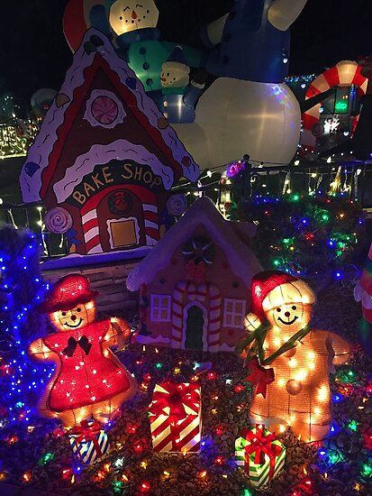 Taylor Residence Christmas Lights Extravaganza 2 by Robert Meyers-Lussier