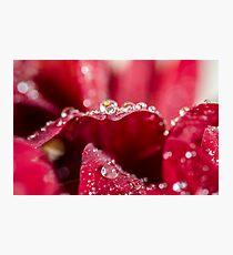 Glittery World Photographic Print