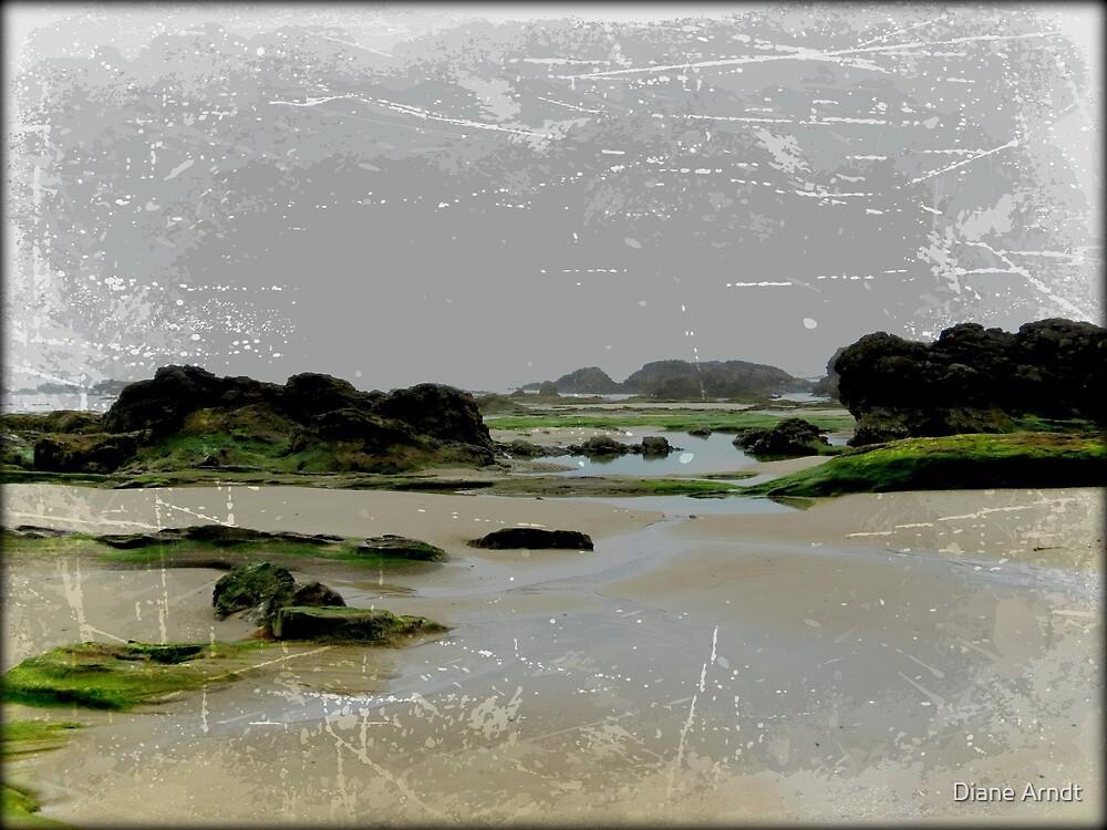 South Beach, Oregon.....Low Tide by Diane Arndt