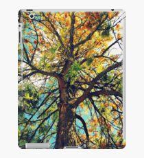 colourful tree iPad Case/Skin