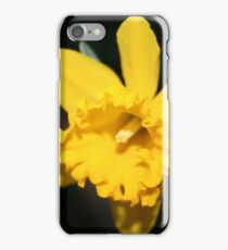 Daring Daffodils iPhone Case/Skin