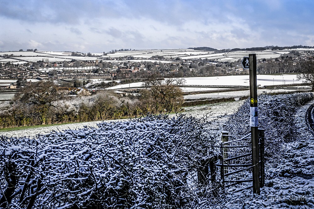 Wintertime in Dorset by Chris L Smith