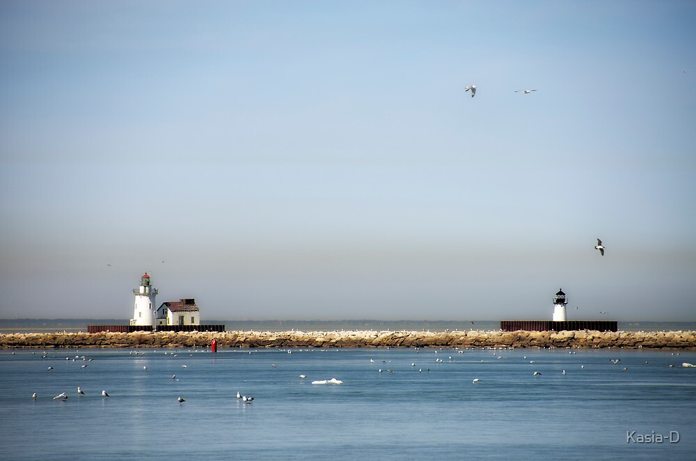 Lake Erie by Kasia-D