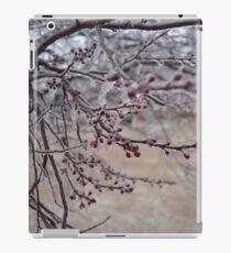 Frozen wonderland iPad Case/Skin