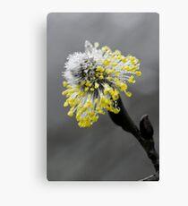 Pop-Colour Flower Canvas Print