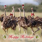 A Holiday Chorus Line by Owed To Nature