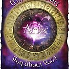 Astrology: Aries by shaunaknight