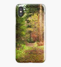 Ireland - Nature - Ravensdale iPhone Case/Skin