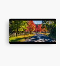 Autumn Cathedral Canvas Print