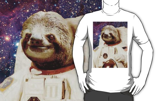 sloth astronaut picture - 556×350
