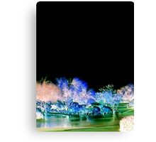 Fairy Land Canvas Print