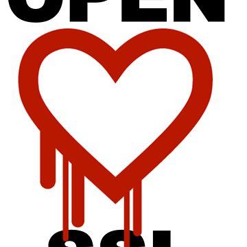 Heartbleed Open SSL by eglute