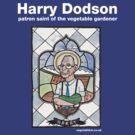 Harry Dodson top by dotmund