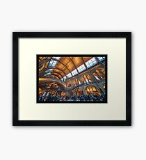 The Natural History Museum Framed Print