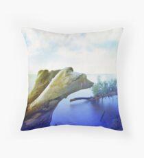 Sandbar St. Park, Lake Champlain, Vermont Throw Pillow