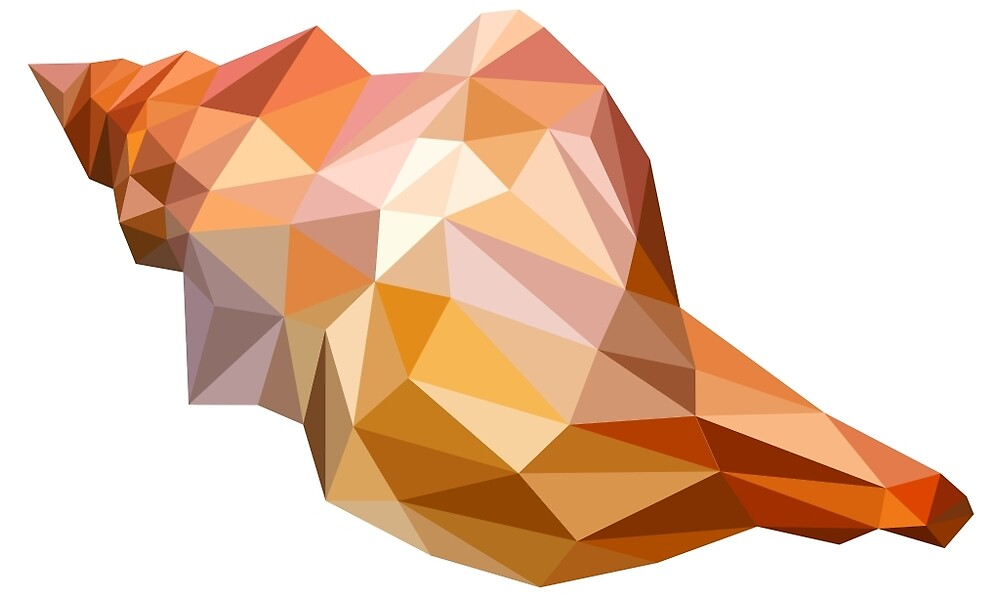 Low Poly Seashell by DigitalShards