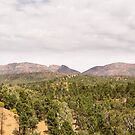 Wilpena Pound viewed from Sacred Canyon Road no. 2 by samg