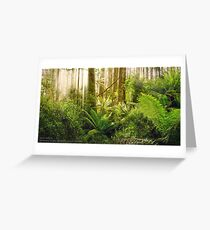 Dandenong Ranges Greeting Card