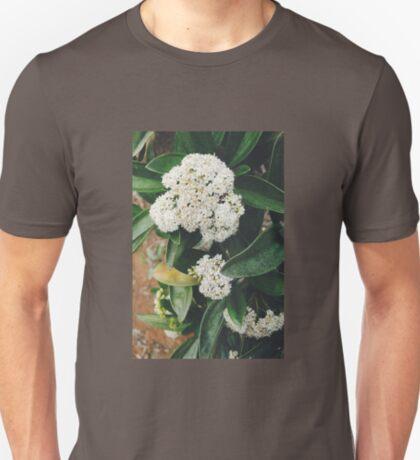 White Glory T-Shirt