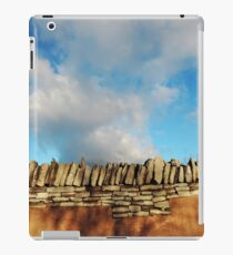 Mustard what a wall iPad Case/Skin