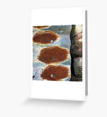 Trinity Of Rust Greeting Card