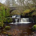 Garell Glen,Kilsyth,Scotland by Jim Wilson