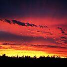 Ballarat Sunset Series 2 No.5 by Erin Davis