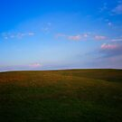 Spring Morning On The Hillside by NFirebaugh