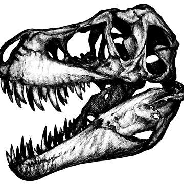 Rex skull by Surke