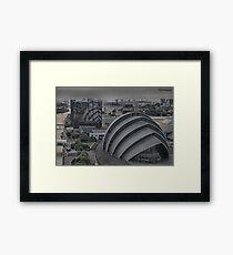Matte Armadillo Framed Print