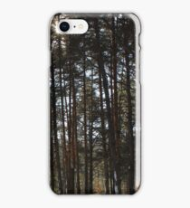 Winter Pines iPhone Case/Skin