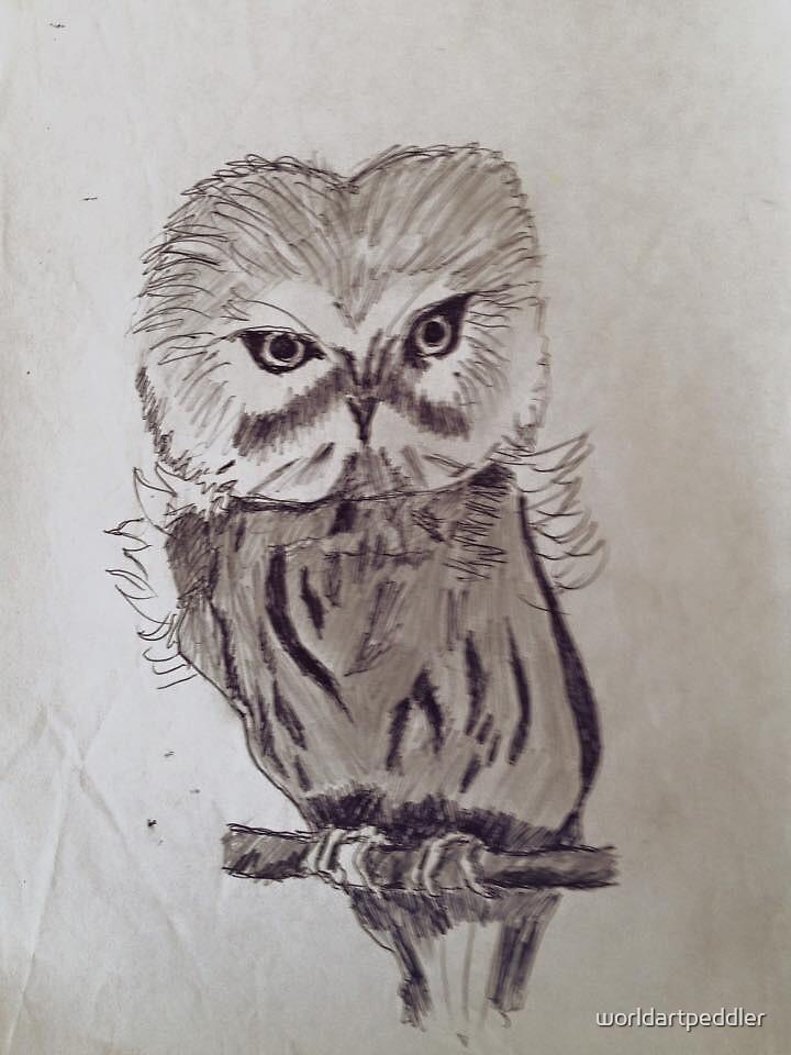 Owl Drawing by worldartpeddler