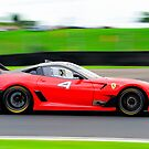 Red Ferrari #4   Ferrari Race Day 2014   Sydney Motor Sport Park by Bill Fonseca