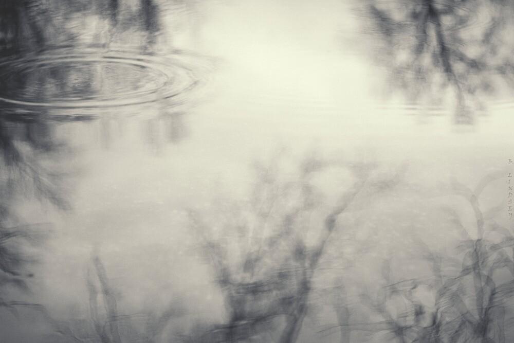Somewhere in a Dream by Birgitta   †