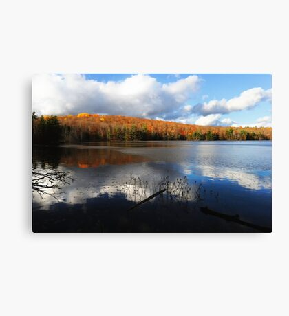 Beaver Pond on a Partly Sunny Day Canvas Print