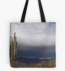 Rainy Arizona Desert Tote Bag