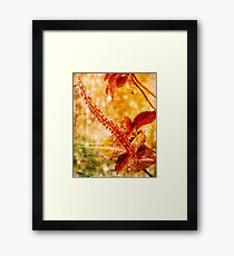 Big Red Stamen Framed Print