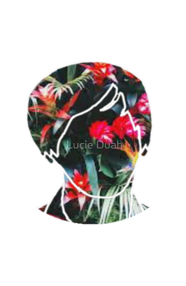 Tropical Lester by Lucie Duah