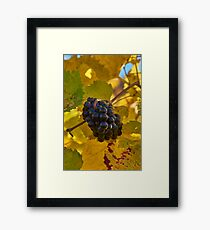 The raw material Framed Print