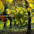 Spring Pond by Igor Zenin