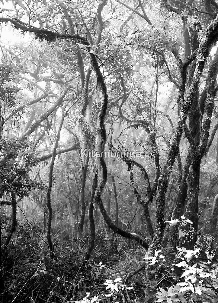 Rainforest No.8 by Kitsmumma