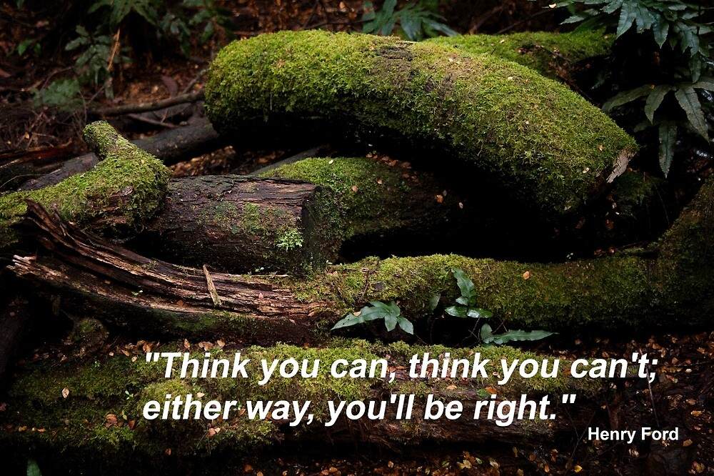 Think You Can; Think You Can't by Rob Chiarolli