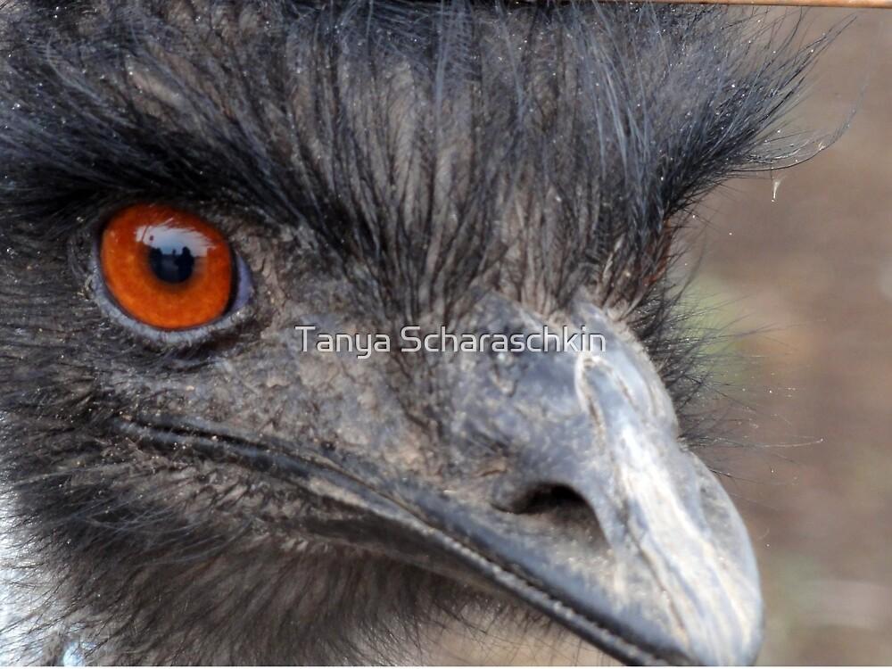 Emu by CraftyTiger