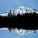 Mt. Rainier Panoramic Reflections by Tori Snow