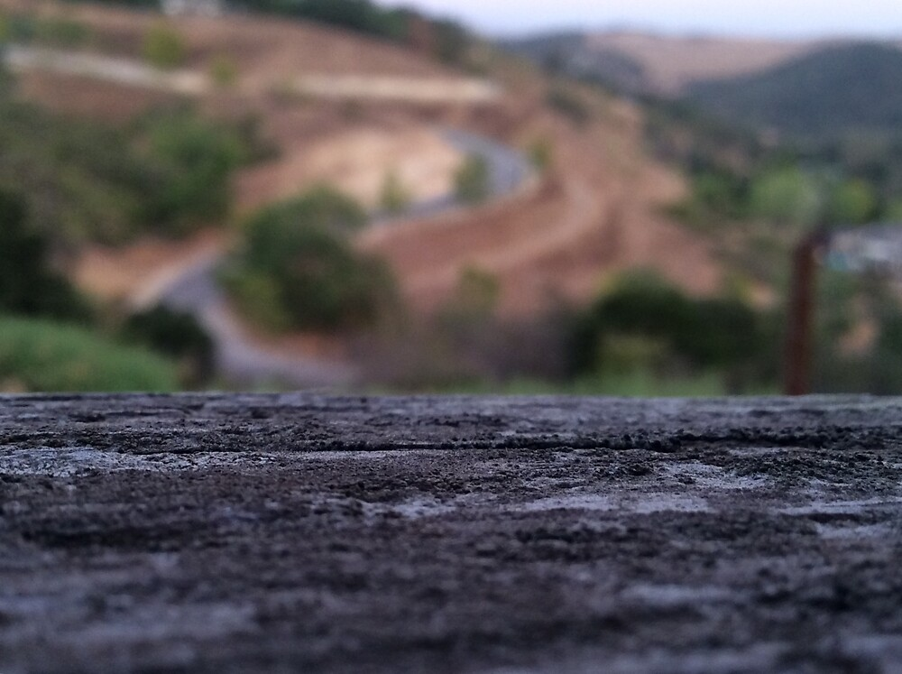 Wood and Hill by leyla-art-un