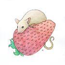 Mouse & Strawberry by Tim Gorichanaz
